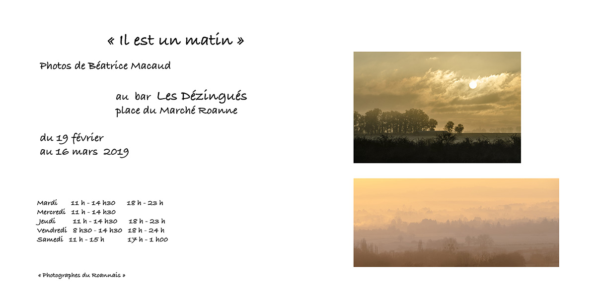 Beatrice MACAUD invitation exposition photo